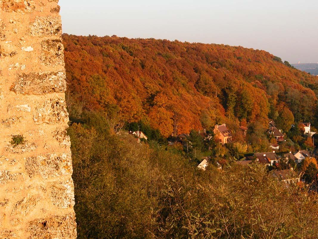 les remparts du château dominant la vallée